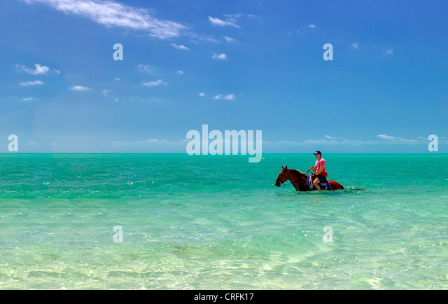 Horse rider in water. Providenciales. Turks and Caicos. - Stock Image