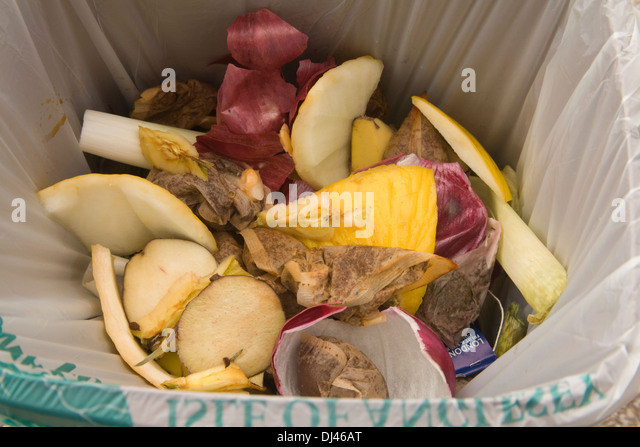 Close up Food waste in bag provided by local authority for weekly collection - Stock Image