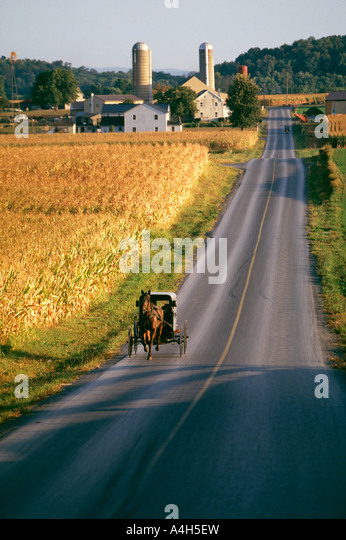 Amish Horse Drawn Buggy, Lancaster County, Pennsylvania, Usa, - Stock Image