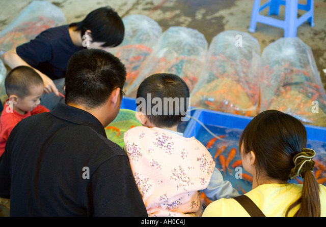 Family looking at goldfish for sale - Stock Image