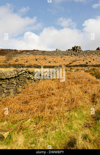 Dry stone walls leading up to Curbar Edge, Peak District, Derbyshire - Stock Image