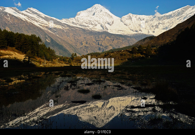 Dhaulagiri Himal seen from Titi, Annapurna Conservation Area, Dhawalagiri (Dhaulagiri), Western Region (Pashchimanchal), - Stock Image
