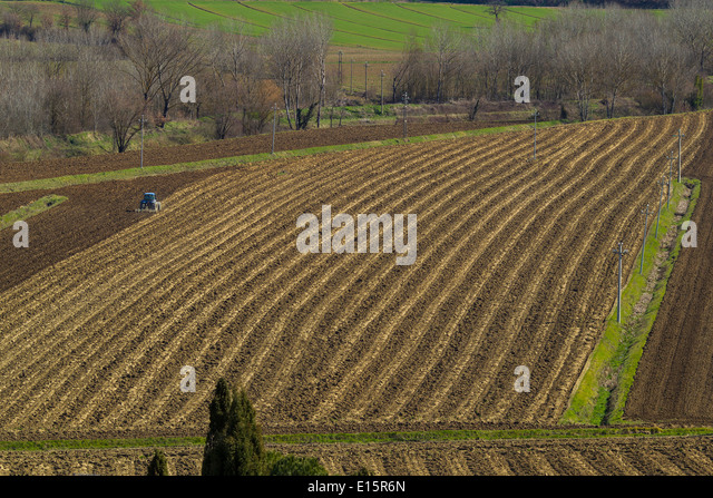 Plowing a field in Umbria Italy - Stock Image