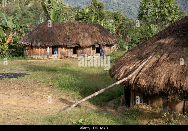 Huts, Baliem Valley, Western New Guinea, Irian Jaya, Papua, Indonesia - Stock Image