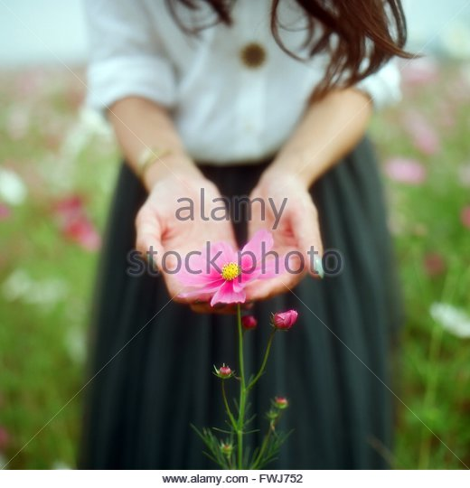 Mid Section Of A Woman Holding Flower - Stock Image