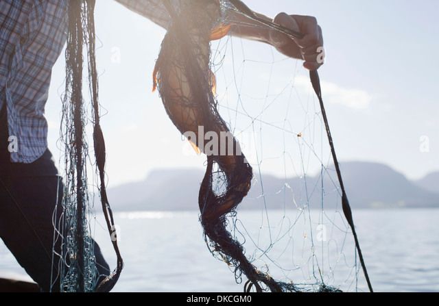 Person holding fish in net, Aure, Norway - Stock Image