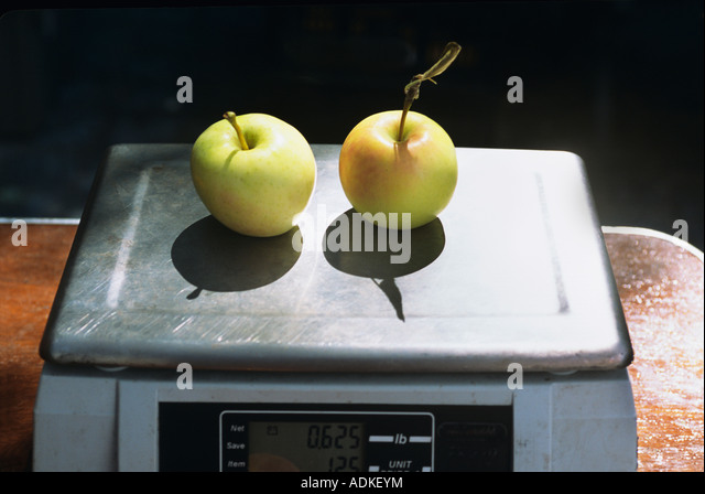 Two yellow apples on a scale - Stock Image