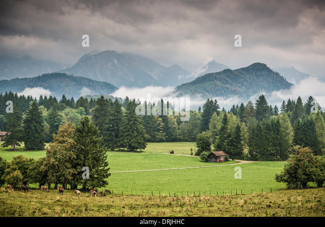 Farmland in the Bavarian Alps. - Stock-Bilder