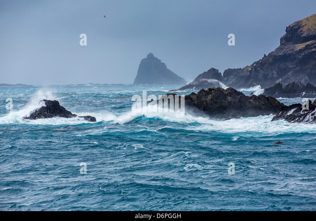 Elsehul Bay, South Georgia, South Atlantic Ocean, Polar Regions - Stock Image
