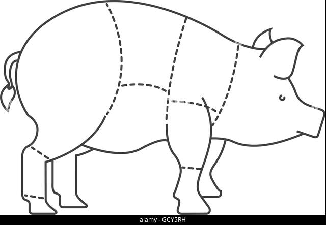 butcher diagram stock photos  u0026 butcher diagram stock