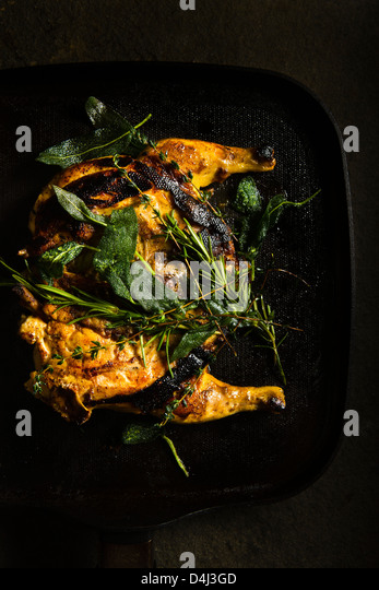Pan Grilled Baby Chicken with Herbs prepared by Marcello Russodivito, Chef Owner of Marcello's Group. - Stock Image