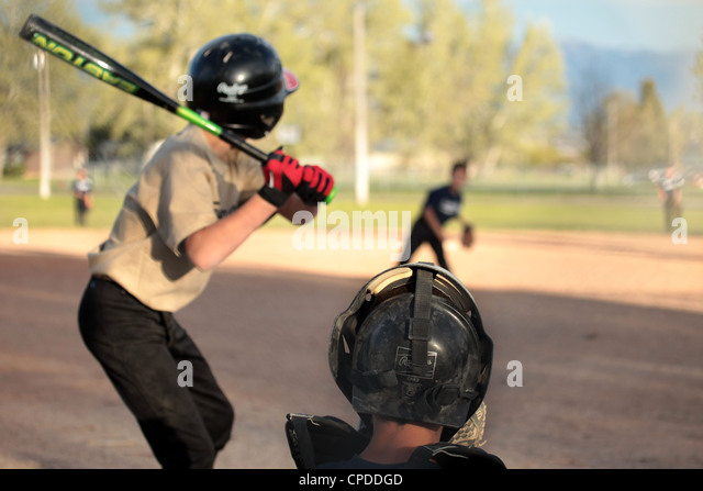 how to start a little league baseball team
