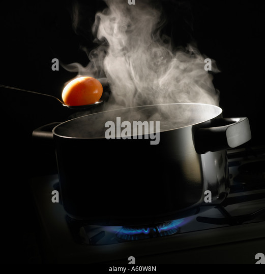 Two Handled Frying Pan