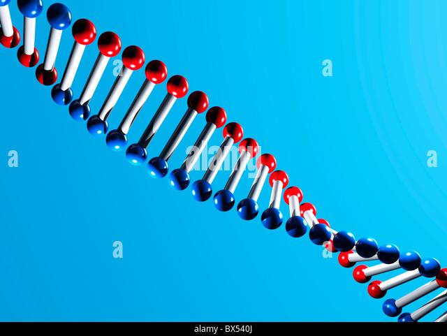 DNA molecule, artwork - Stock Image