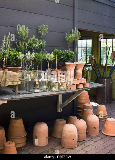Maryland USA group of clay pots with cuttings and seedlings - Stock Image