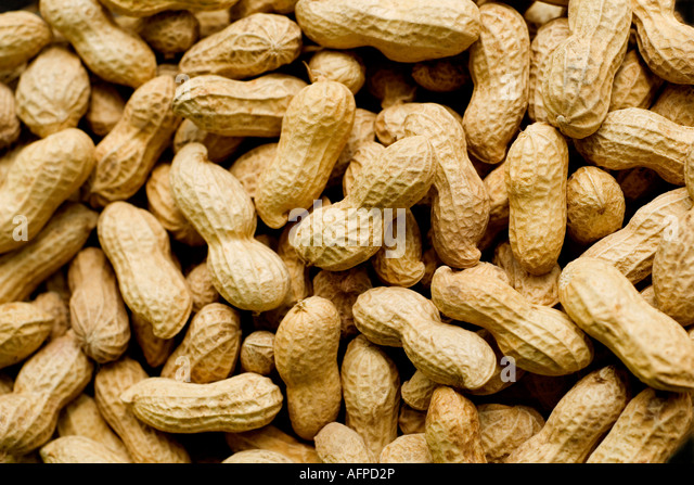 PEANUTS IN SHELLS SOFT LIGHT - Stock Image