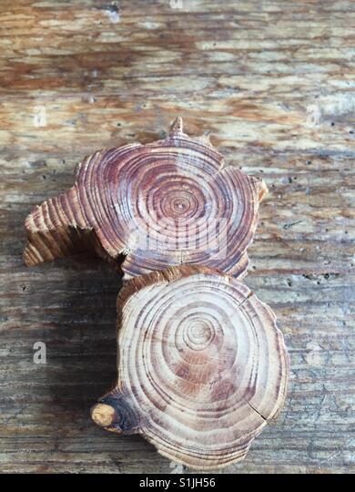 Close up of woodcraft - Stock Image
