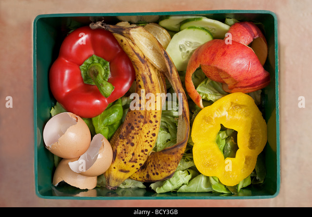 Kitchen food waste ready for compositing - Stock Image