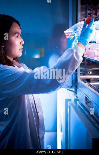 female Asian scientist removing sample from incubator in science laboratory - Stock-Bilder