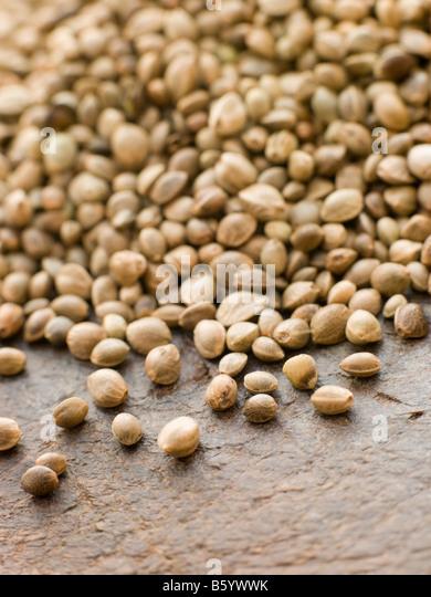 Green Lentils, Puy Lentils - Stock Image