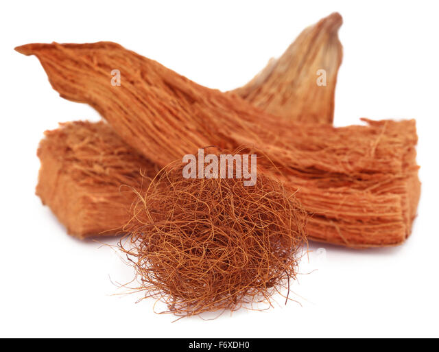 how to make coir from coconut husk
