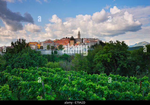 Labin old town on the hill in Istra, Croatia - Stock Image