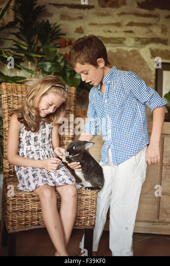 Boy and girl playing with their pet rabbit - Stock Image