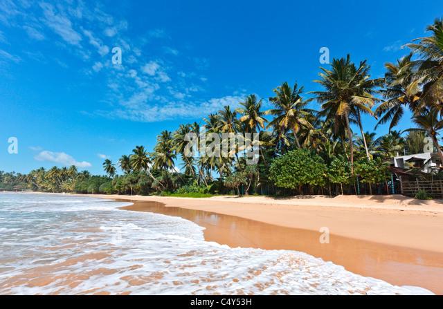 Tropical paradise idyllic beach. Sri Lanka - Stock-Bilder