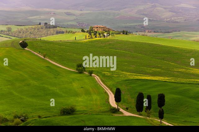Landscape near Pienza, Tuscany, Italy - Stock Image