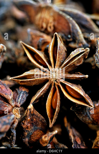 Star anise spice - Stock Image