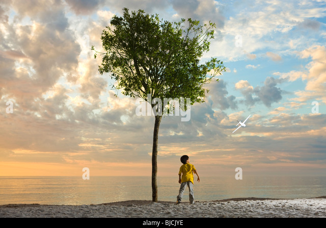 Boy standing beneath tree on beach watching plane soaring through the air - Stock Image