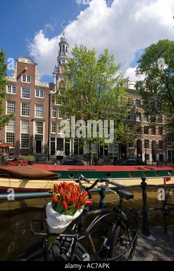 Amsterdam bicycle with tulips Zuiderkerk - Stock Image