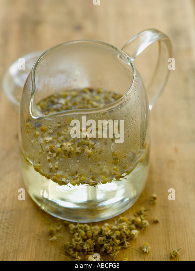 Camomile tea in contemporary glass teapot - high end Hasselblad 61mb digital image - Stock Image