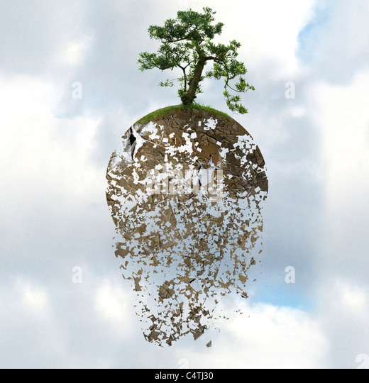 Deforestation threatens the global environment - Stock Image