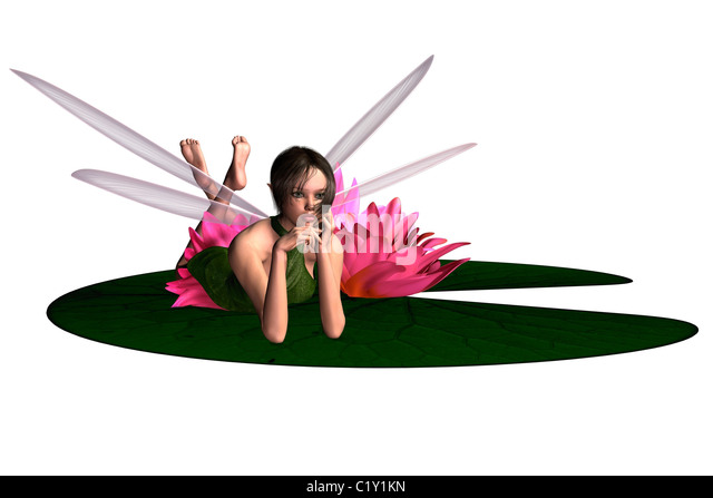 Waterlily Fairy - Stock Image