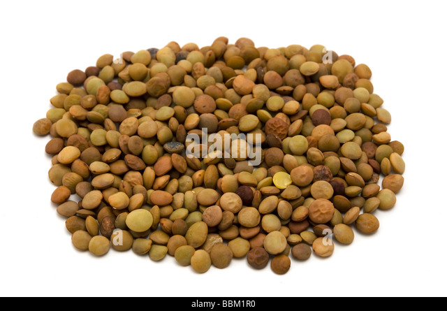 Lentils on a white background - Stock Image