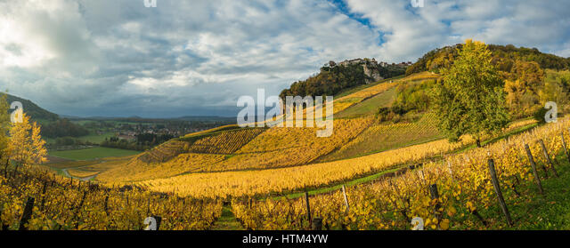 Autumnal colours in the vineyards around Château-Chalon, Jura, Franche-Comté, France - Stock-Bilder