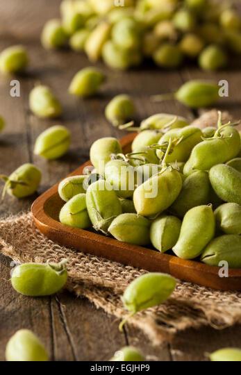 Raw Fresh Organic Green Garbanzo Beans in a Bowl - Stock Image