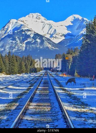 Railroad track and Cascade Mountain, Banff, Alberta, Canada - Stock-Bilder