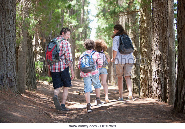 Family hiking in woods - Stock-Bilder
