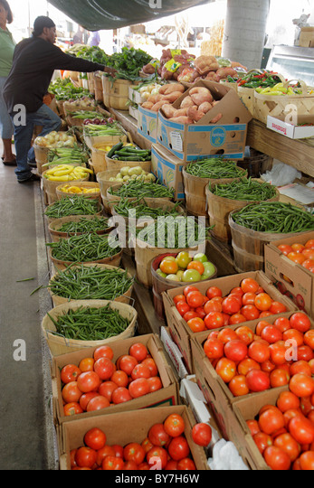 Nashville Tennessee Nashville Farmers' Market agriculture locally grown produce vegetables fresh tomatoes squash - Stock Image