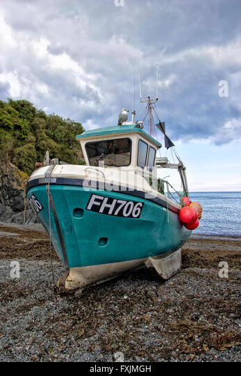 Beached Fishing Boat Trawler Cadgwith Cove Lizard Cornwall - Stock Image