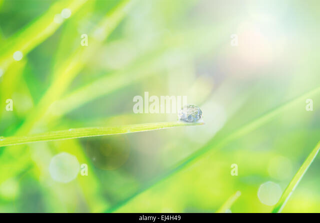 Composite image of green abstract light spot design - Stock Image