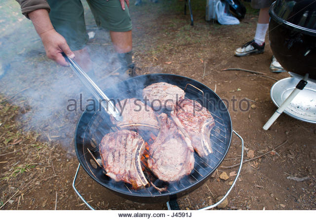 scout food stock photos amp scout food stock images   alamy