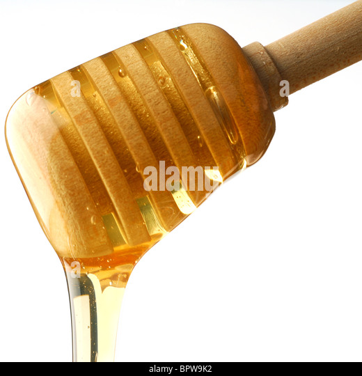 Honey is dripping down studio isolated on white background - Stock Image