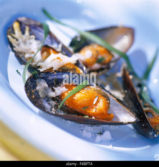 catalogue 2 close-up color image detail dish food food and drink gourmet mussel shellfish square starter Swedish - Stock-Bilder