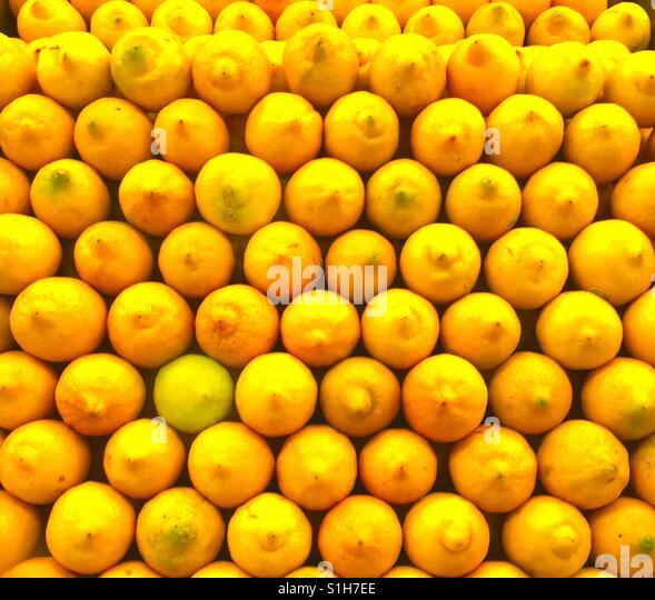Pucker up, Lots of Large Bright Yellow Lemony Lemons at Market - Stock Image