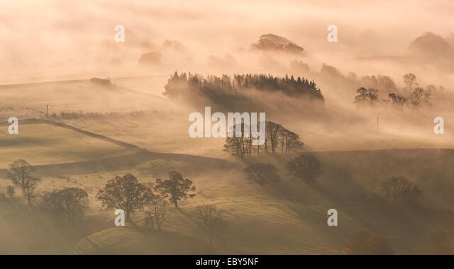 Mist covered rolling countryside at dawn, Lake District, Cumbria, England. Autumn (November) 2014. - Stock Image