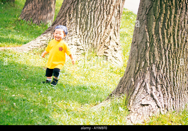 A little boy by the big trees - Stock-Bilder