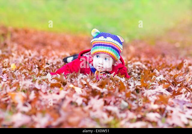 Funny little baby girl playing with colorful red autumn leaves - Stock Image